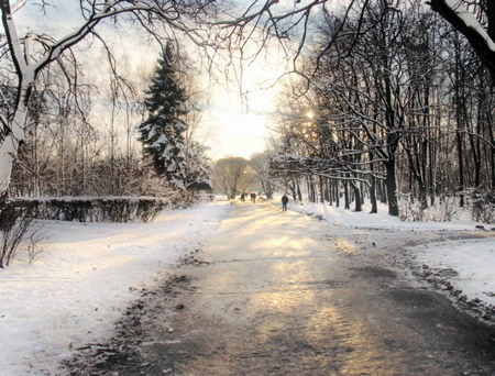 599_winterpoland-witelburkiewicz-st-petersborg.jpg