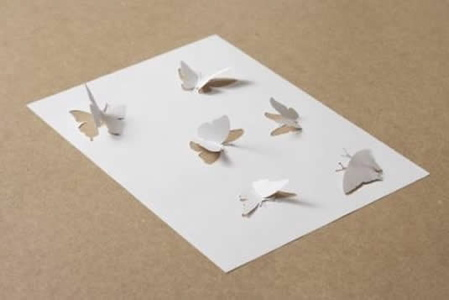 butterfliestryingtoescapetheirshadowweb_000-1.jpg