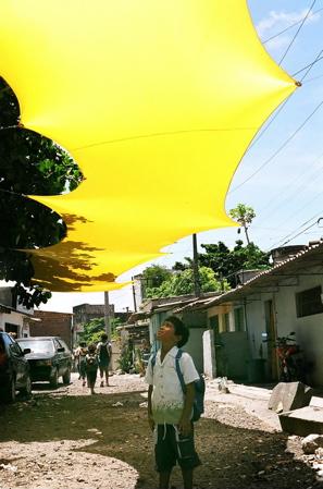 canopy_small.jpg