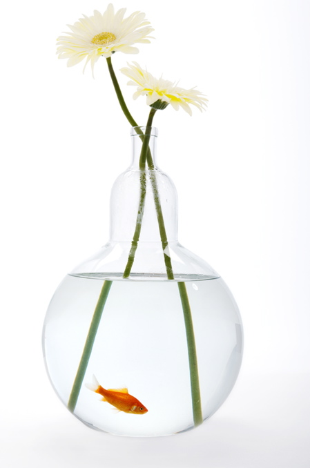 web-fishbowl-bottle-vase.jpg