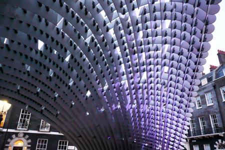 canopy_large.jpg