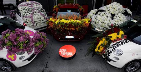 five-floral-fiats.jpg