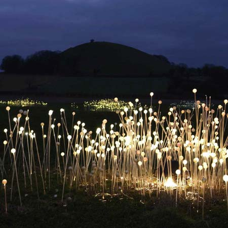 Field of light by bruce munro dezeen for Exterior light design