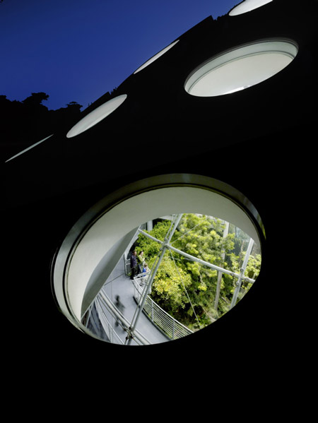12_living_roof_closeup_nigh.jpg