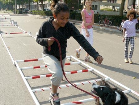 dogs-at-droog-citydog1.jpg
