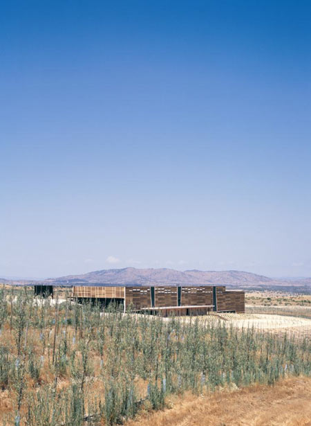 olisur-olive-oil-factory-by-gh-a-architects-4.jpg