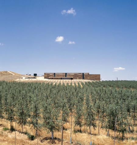 olisur-olive-oil-factory-by-gh-a-architects-8.jpg
