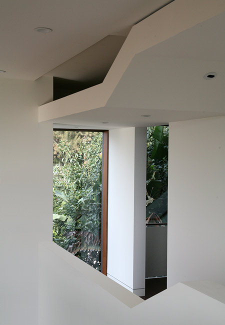 mush-residence-by-studio-010-architects-mush_intopentobelow_02.jpg