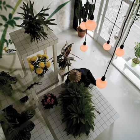 Aktipis flowershop by point supreme architects