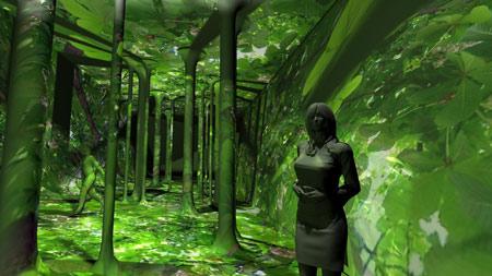 forest_rgb.jpg