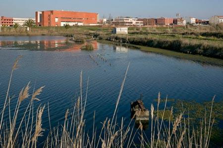 duccio-malagamba-photographs-alvaro-siza-aveiro-university-library-3.jpg