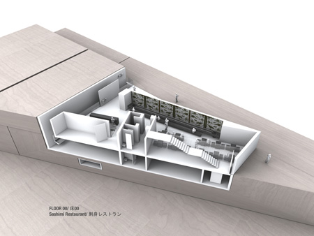 harajuku-house-by-daniel-statham-architects138_level_00.jpg