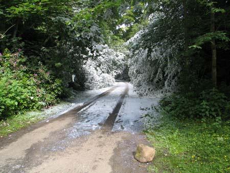 midsummer-snowstorm-by-peter-liversidge_iimg_3789.jpg