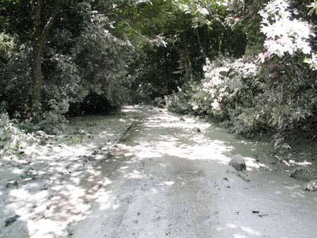 midsummer-snowstorm-by-peter-liversidge_iimg_3799.jpg