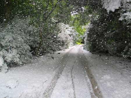 midsummer-snowstorm-by-peter-liversidge_iimg_3898.jpg