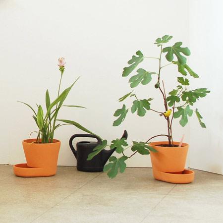plant-pots_uli-budde1.jpg
