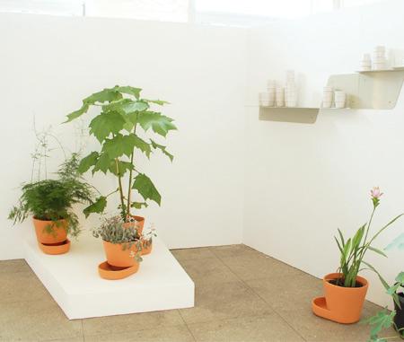 plant-pots_uli-budde4.jpg