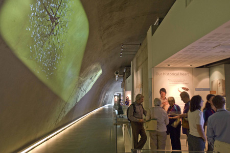 Darwin centre new 2