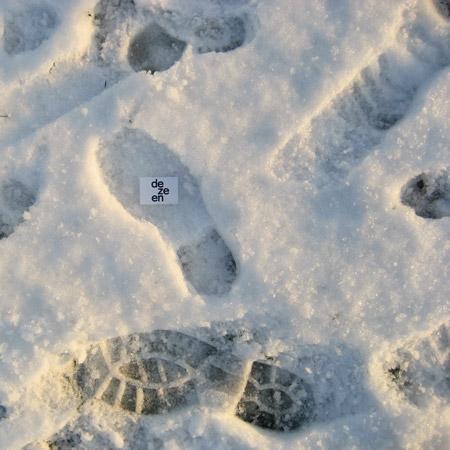 DZN_snow-3