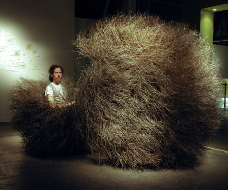 Bush of Iron by Nacho Carbonell