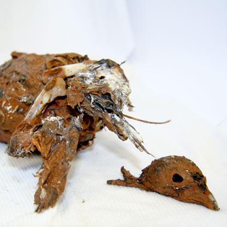 Fossilisation machine results by Austin Houldsworth