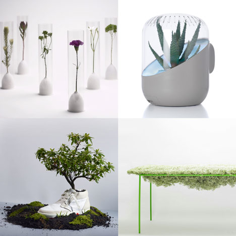 Dezeen archive: plants