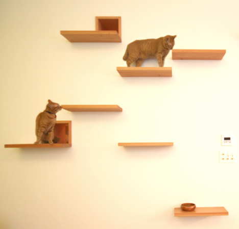The Cat House by Key Operation