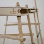 Poles Apart by Adrian Bergman