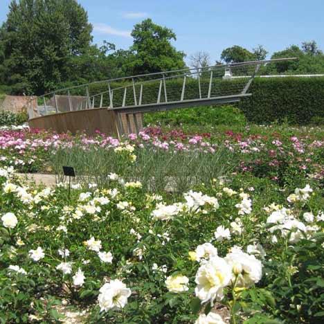 Dezeen Screen: garden design by Wilson McWilliam Studio