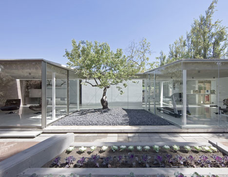 Spa Atrapa Árbol by LAND Arquitectos