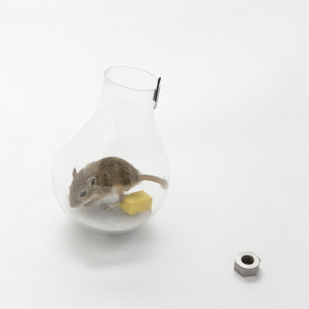 Designed in Hackney: Non-lethal mousetraps by Roger Arquer