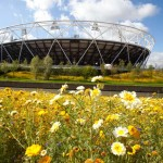 """""""Olympics stadium disappoints architects, but supporting cast save day"""" - Guardian"""