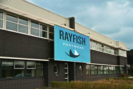 Rayfish offices