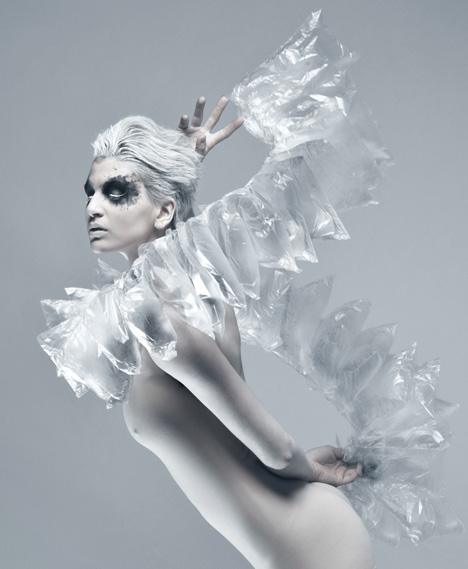 Airborne by Stephanie Van Zwam