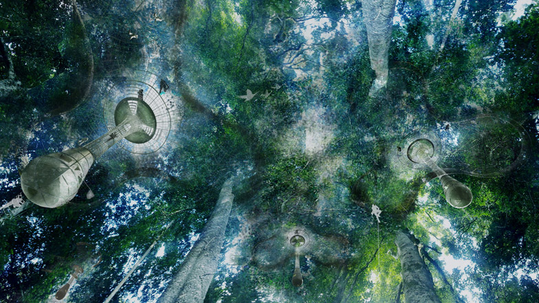 Explorative Canopy Trail by Yvonne Weng