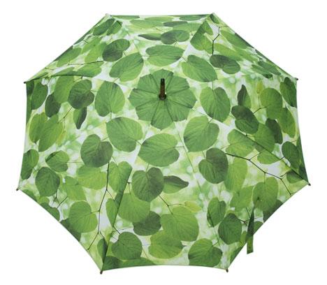 Umbrellas by Ella Doran