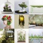 New Pinterest board: plants