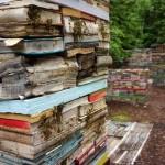 Jardin de la Connaissance by Rodney LaTourelle and 100 Landschaftsarchitektur – update