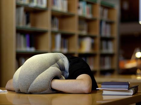 Ostrich Pillow by Kawamura-Ganjavian