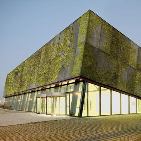 "Researchers develop ""biological concrete"" for moss-covered walls"