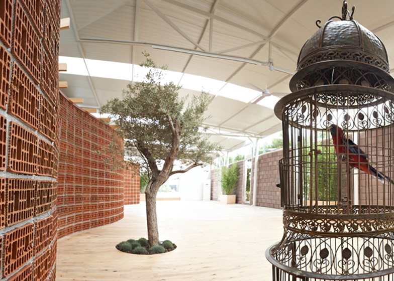 A caged parrot watches over the olive tree growing in this office in Turkey by Yerce Architecture.