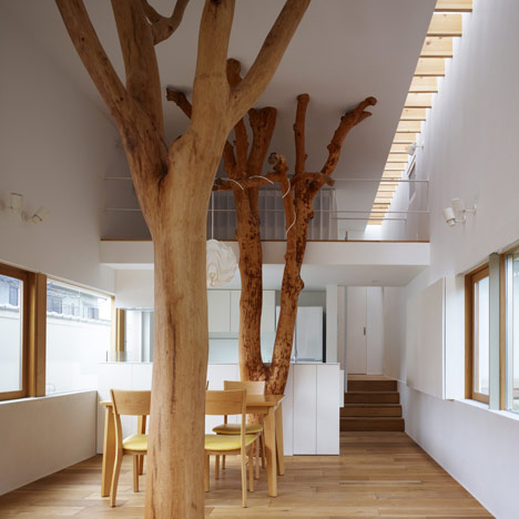 dezeen_indoor-trees-feature