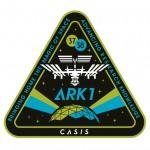 Shepard Fairey designs badge for International Space Station