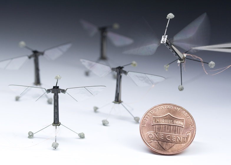 http://static.dezeen.com/uploads/2013/05/dezeen_Tiny-robotic-insect-takes-flight_ss_2.jpg