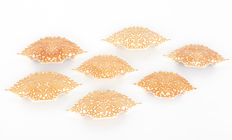 BioElectric plastic made of chitin from crab shells by Jeongwon Ji
