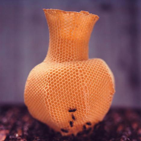 The Honeycomb Vase by Tomáš Libertíny