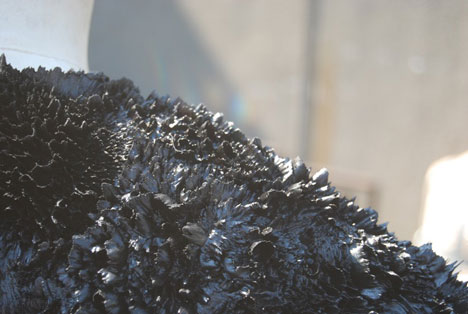 Magnetic grown dresses by Iris van Herpen and Jolan van der Wiel