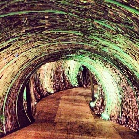 Rattan Tunnel at Bacanalia