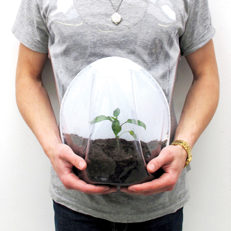 Plant Pregnancy by Alice Kim