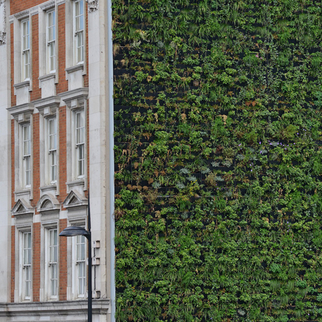 "London's largest living wall will ""combat flooding"""
